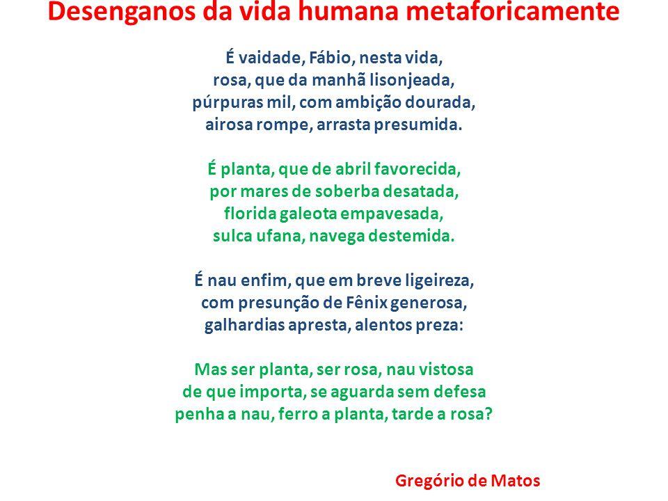 Desenganos da vida humana metaforicamente