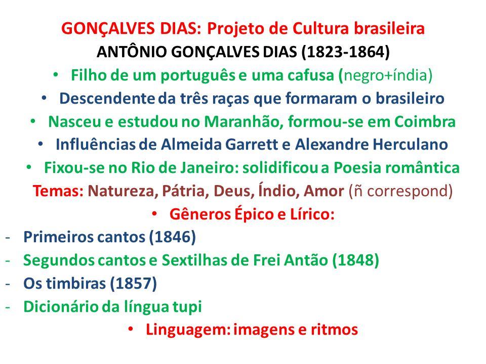 GONÇALVES DIAS: Projeto de Cultura brasileira