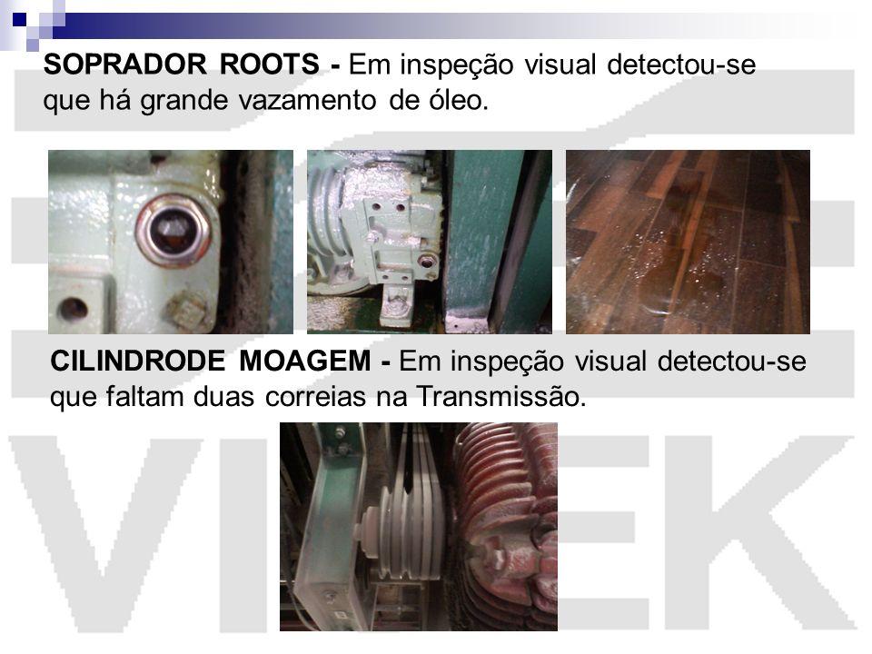 SOPRADOR ROOTS - Em inspeção visual detectou-se