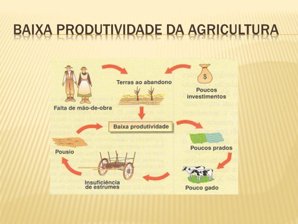 Baixa Produtividade da agricultura