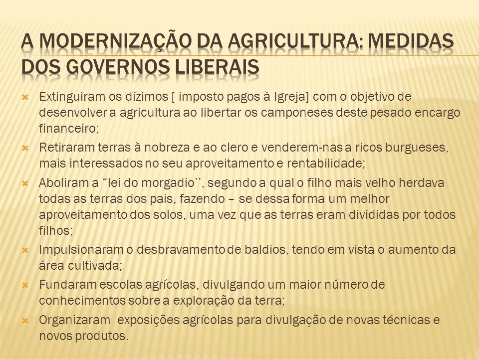 A modernização da agricultura: medidas dos governos liberais