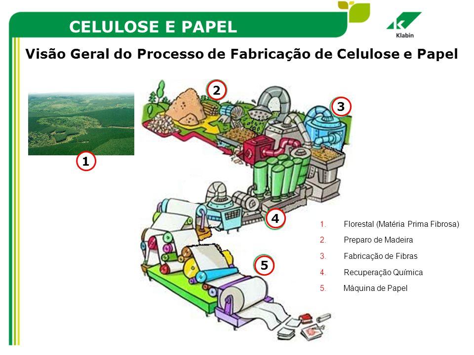 CELULOSE E PAPEL Visão Geral do Processo de Fabricação de Celulose e Papel. Florestal (Matéria Prima Fibrosa)