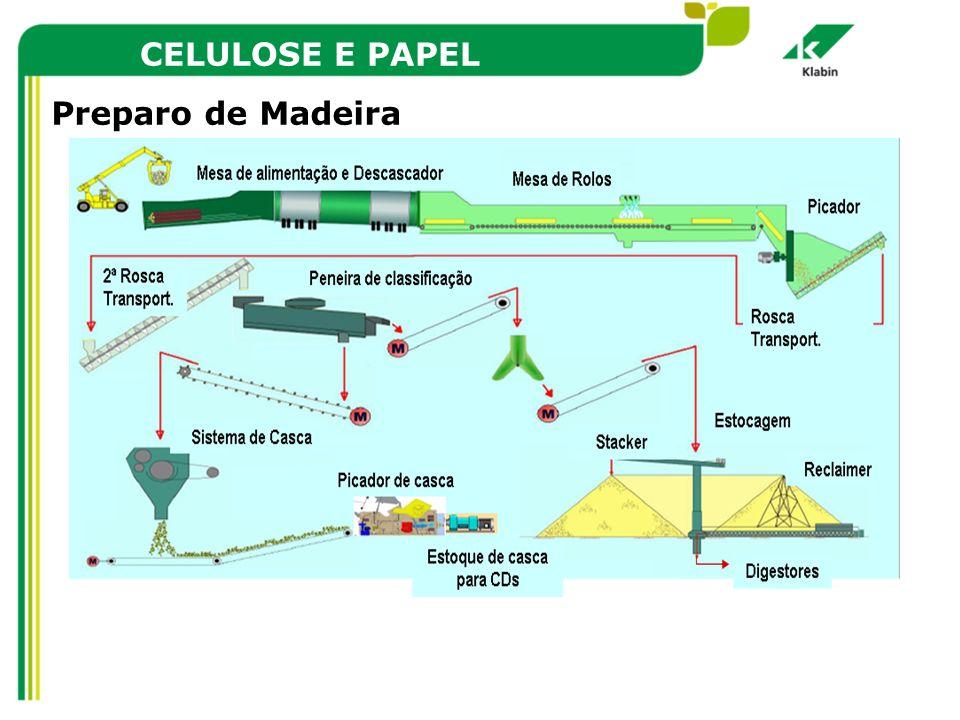 CELULOSE E PAPEL Preparo de Madeira