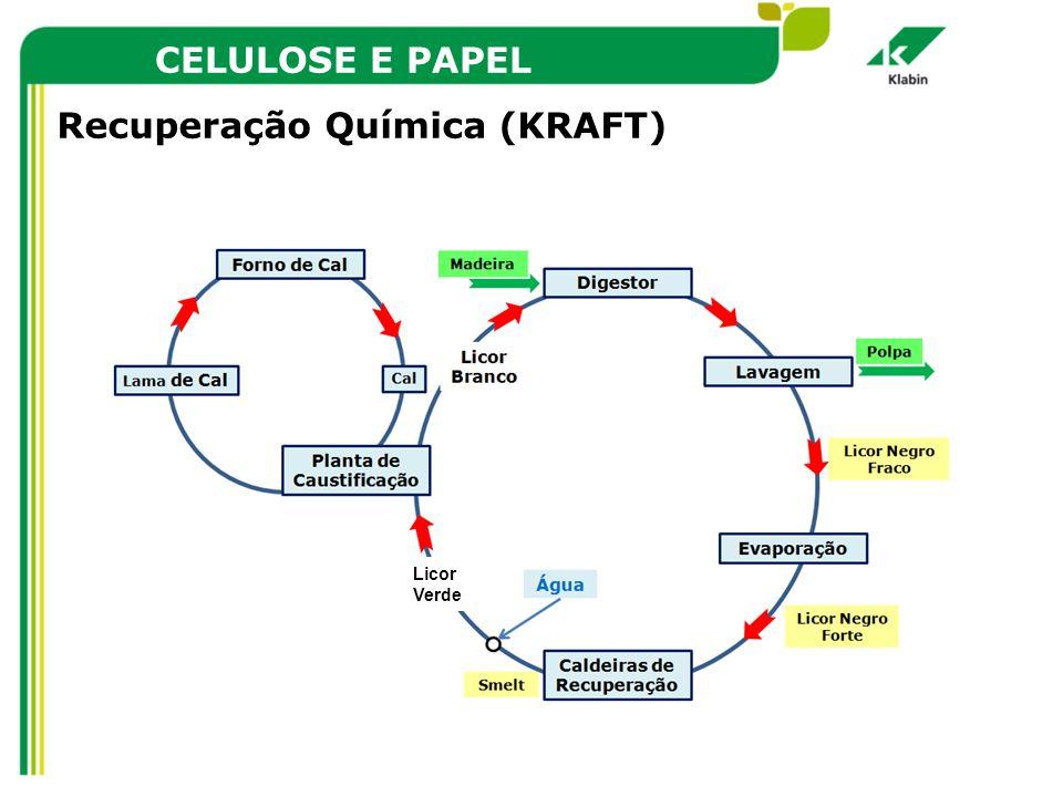Recuperação Química (KRAFT)