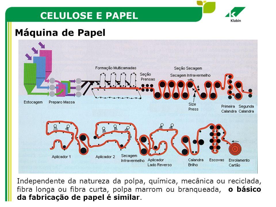 CELULOSE E PAPEL Máquina de Papel