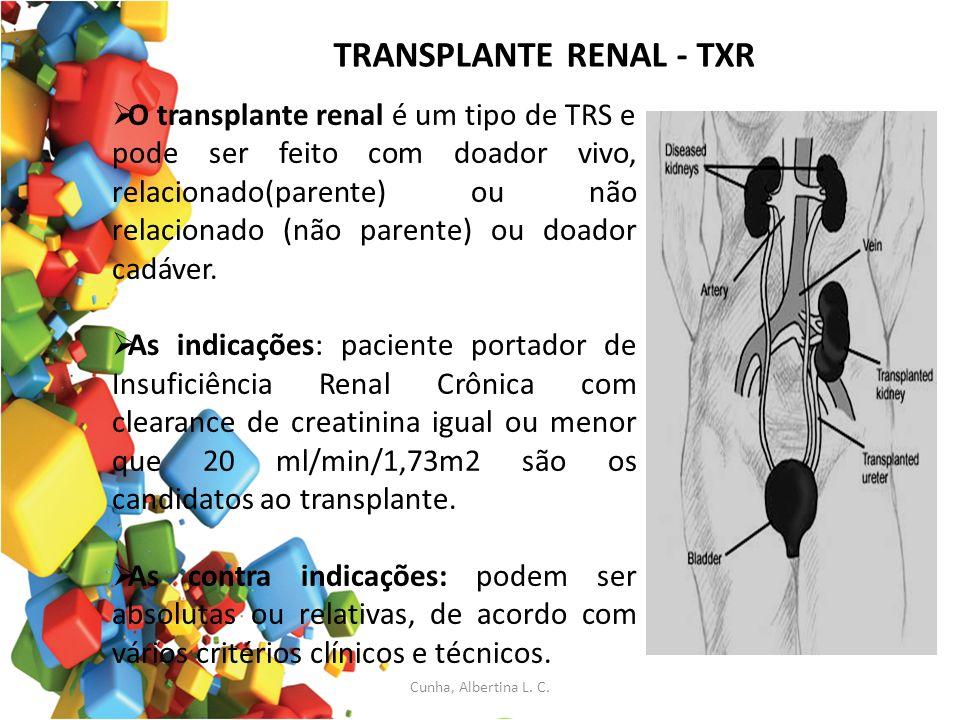 TRANSPLANTE RENAL - TXR