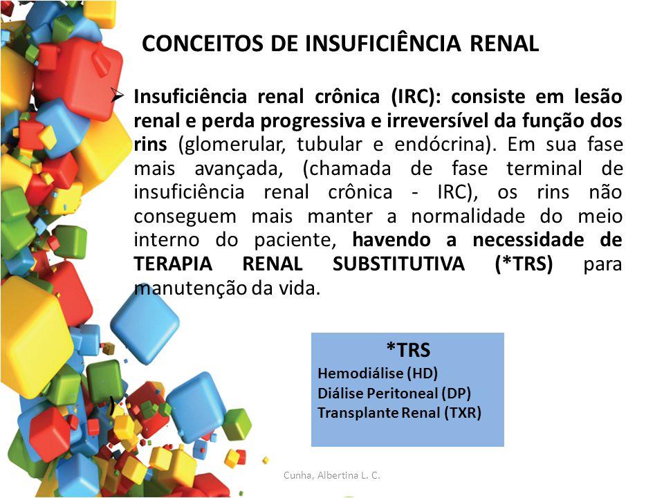 CONCEITOS DE INSUFICIÊNCIA RENAL