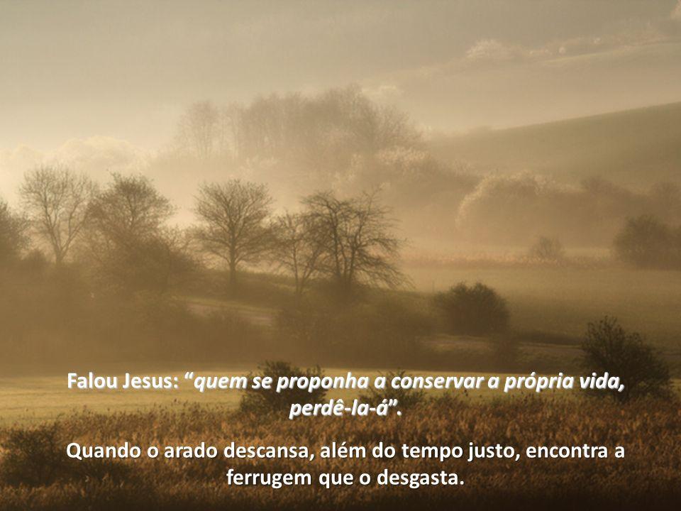 Falou Jesus: quem se proponha a conservar a própria vida, perdê-la-á .