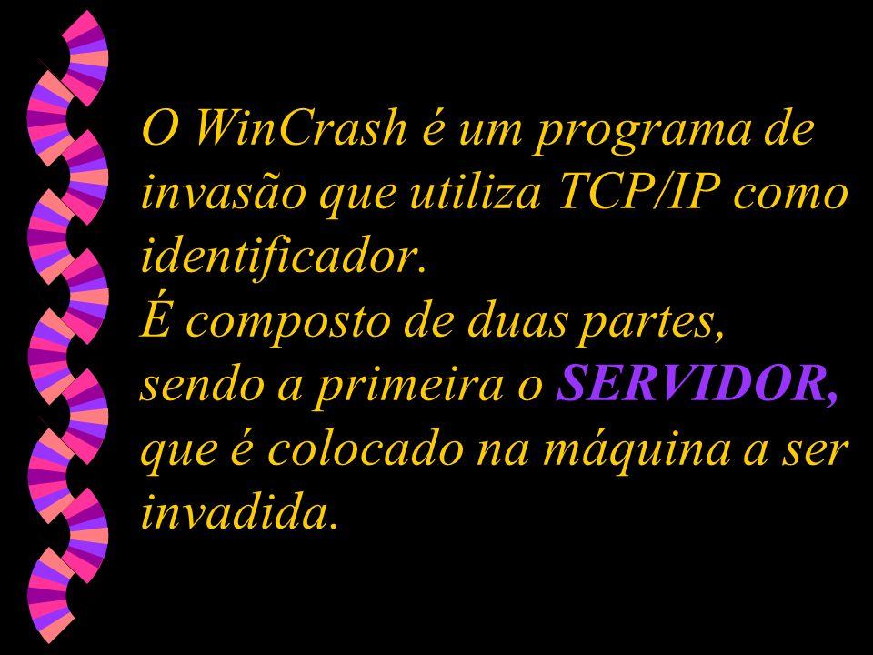 O WinCrash é um programa de invasão que utiliza TCP/IP como identificador.