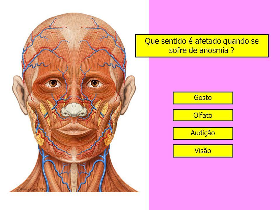 Que sentido é afetado quando se sofre de anosmia