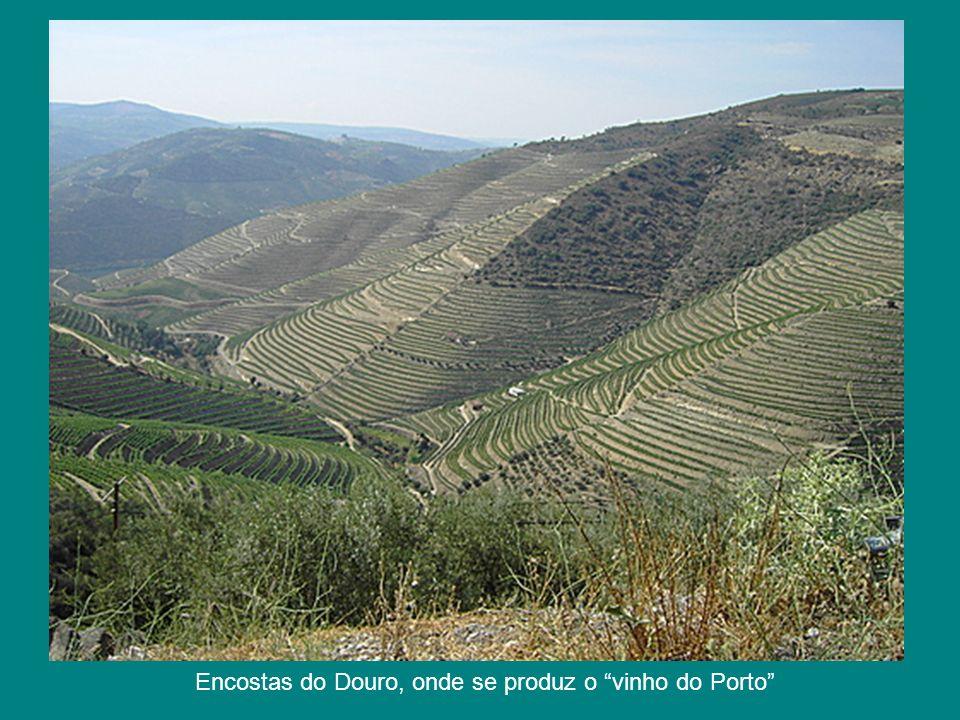 Encostas do Douro, onde se produz o vinho do Porto