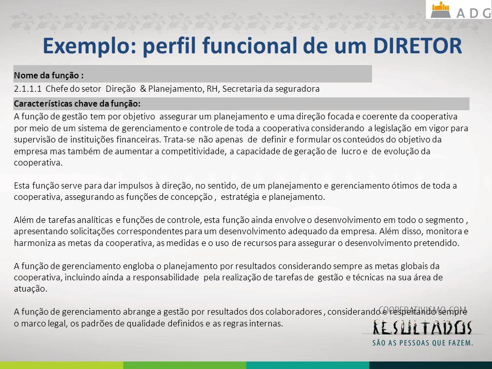 Exemplo: perfil funcional de um DIRETOR