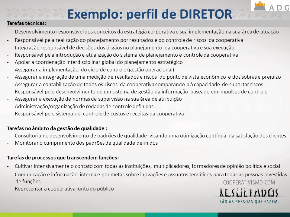Exemplo: perfil de DIRETOR