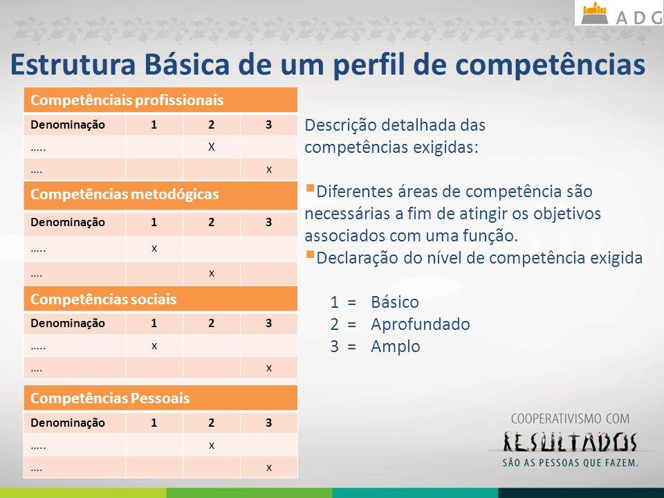 Estrutura Básica de um perfil de competências