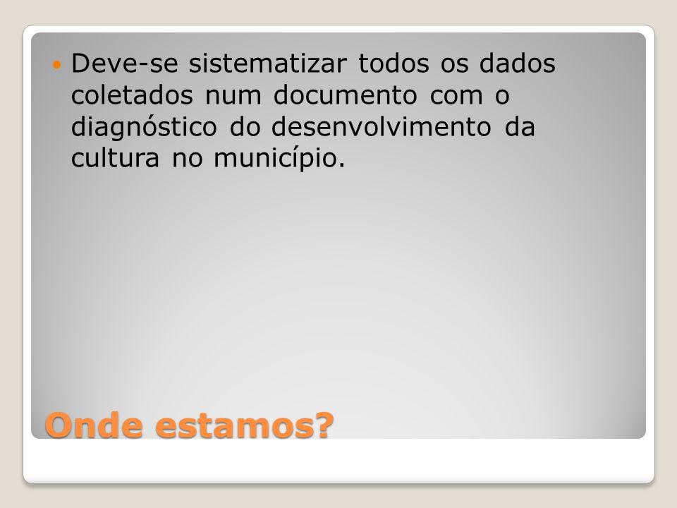 Deve-se sistematizar todos os dados coletados num documento com o diagnóstico do desenvolvimento da cultura no município.