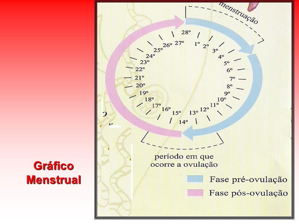 Gráfico Menstrual