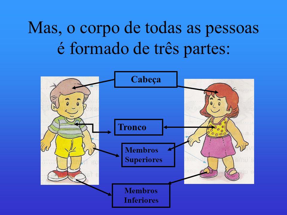 Mas, o corpo de todas as pessoas é formado de três partes: