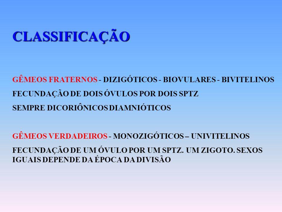 CLASSIFICAÇÃO GÊMEOS FRATERNOS - DIZIGÓTICOS - BIOVULARES - BIVITELINOS. FECUNDAÇÃO DE DOIS ÓVULOS POR DOIS SPTZ.