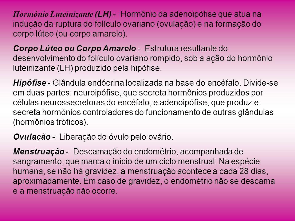 Hormônio Luteinizante (LH) - Hormônio da adenoipófise que atua na indução da ruptura do folículo ovariano (ovulação) e na formação do corpo lúteo (ou corpo amarelo).