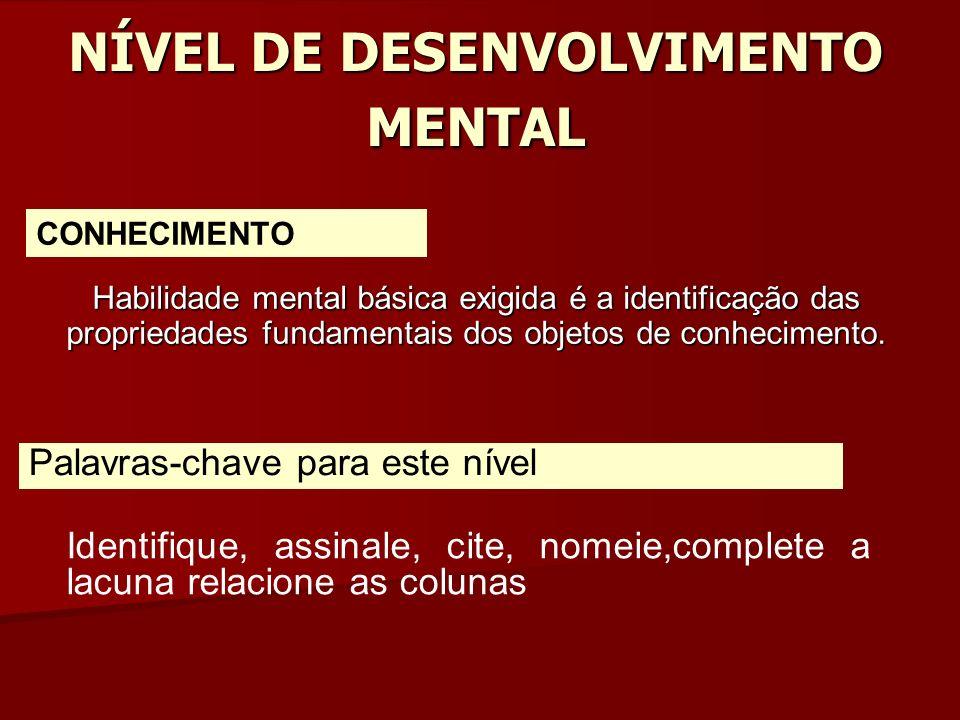 NÍVEL DE DESENVOLVIMENTO MENTAL
