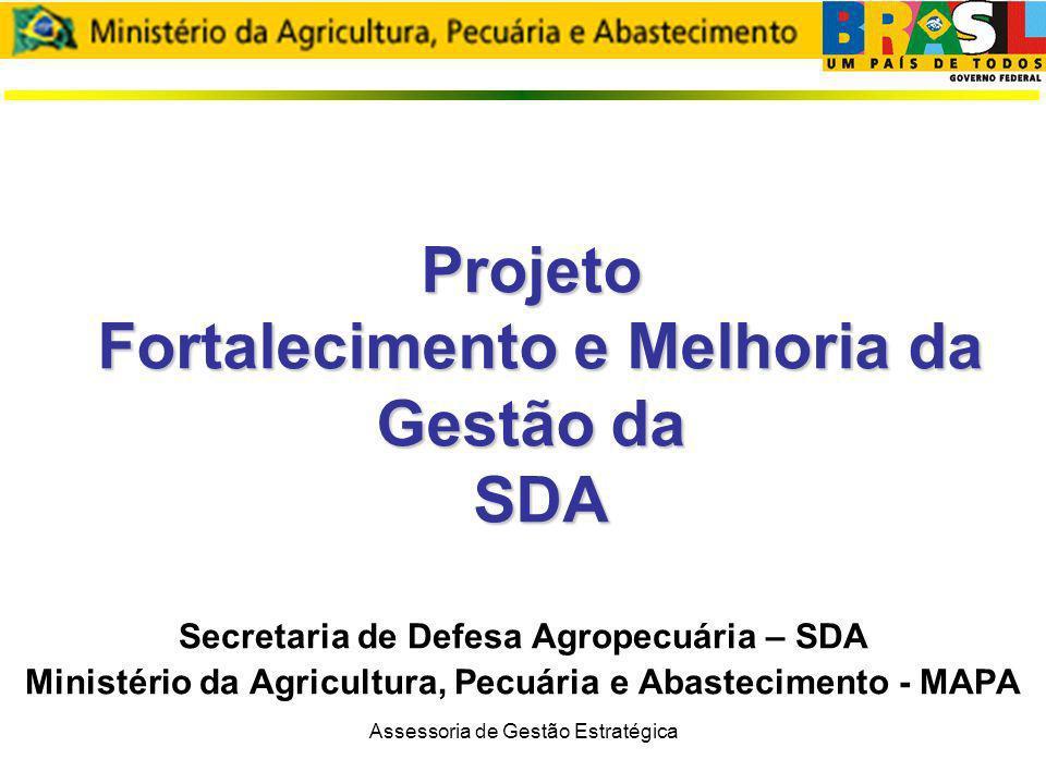Projeto Fortalecimento e Melhoria da Gestão da SDA