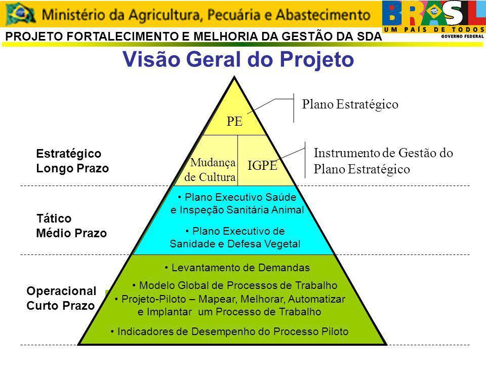 Visão Geral do Projeto PE Plano Estratégico