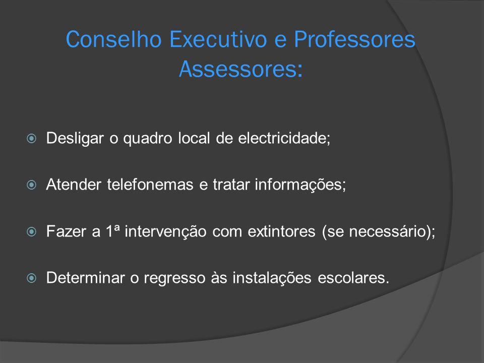 Conselho Executivo e Professores Assessores: