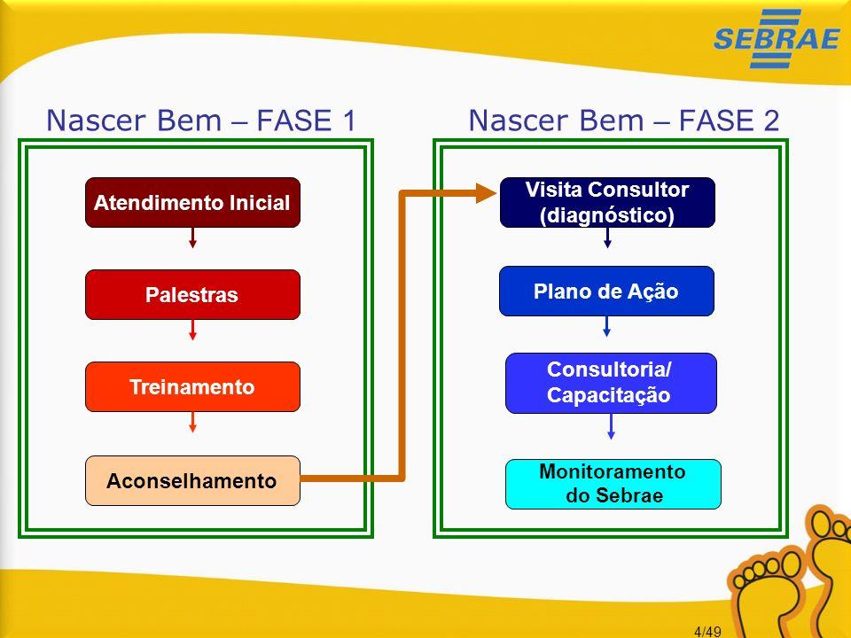 Nascer Bem – FASE 1 Nascer Bem – FASE 2 Visita Consultor