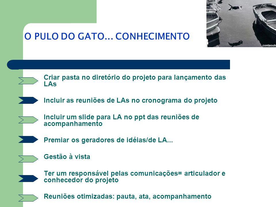 O PULO DO GATO... CONHECIMENTO