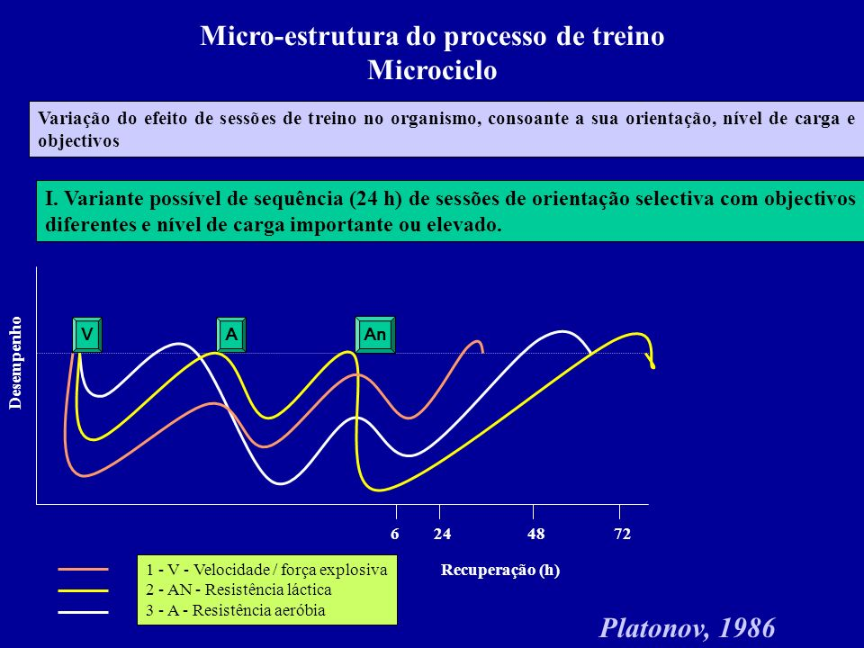 Micro-estrutura do processo de treino Microciclo