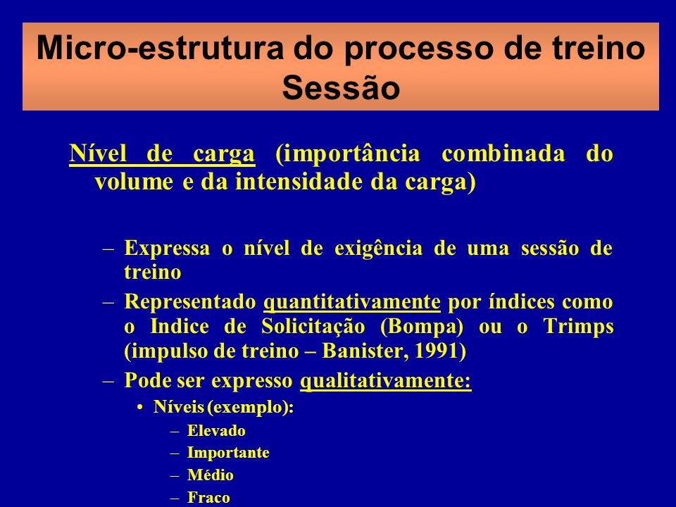 Micro-estrutura do processo de treino Sessão