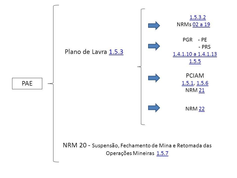 PGR - PE - PRS. 1.4.1.10 a 1.4.1.13. 1.5.5. PCIAM. 1.5.1, 1.5.6. NRM 21. 1.5.3.2. NRMs 02 a 19.