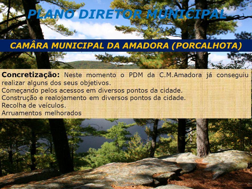 PLANO DIRETOR MUNICIPAL CAMÂRA MUNICIPAL DA AMADORA (PORCALHOTA)