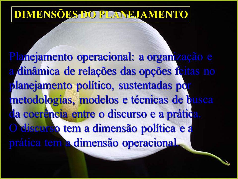 Planejamento operacional: a organização e