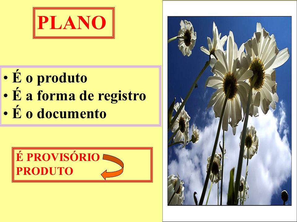 PLANO É o produto É a forma de registro É o documento