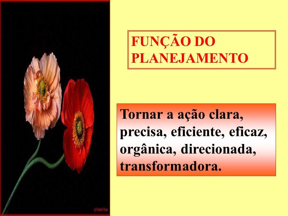 FUNÇÃO DO PLANEJAMENTO