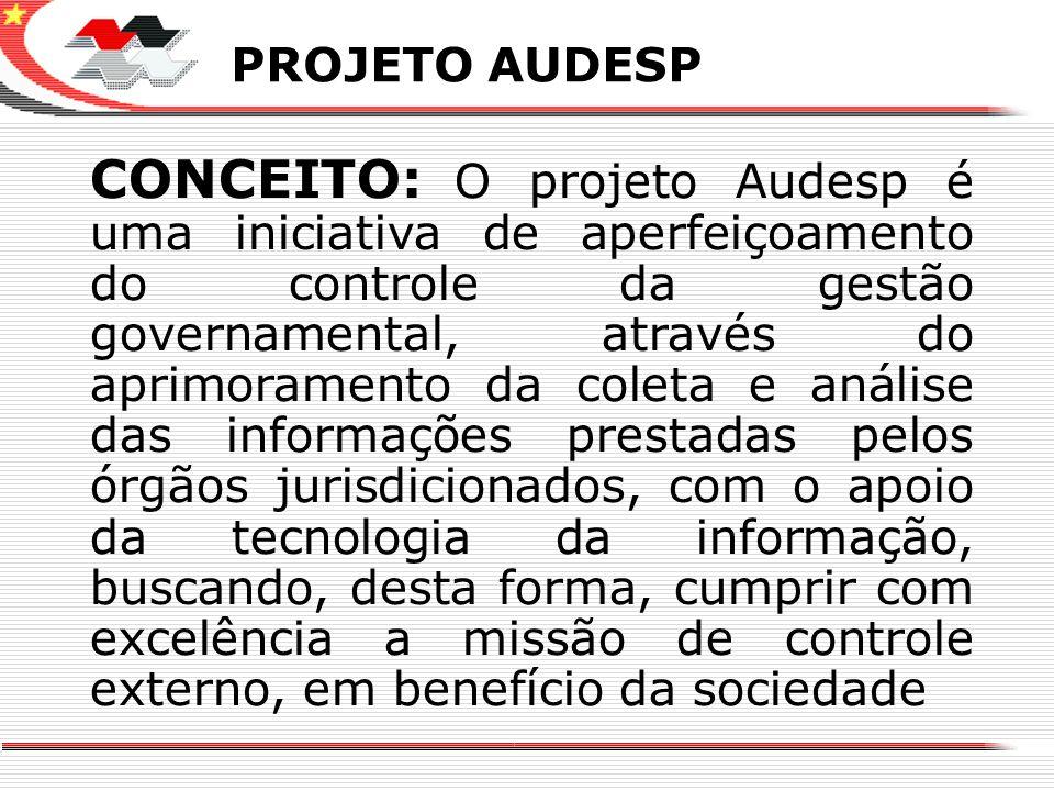 X PROJETO AUDESP.