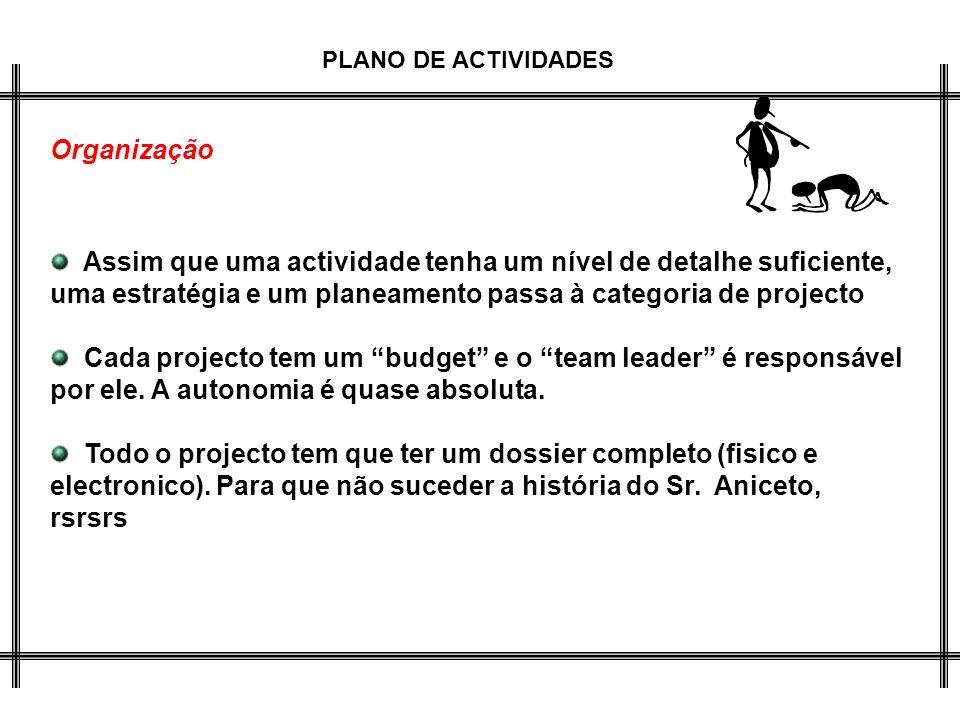 Organização Assim que uma actividade tenha um nível de detalhe suficiente, uma estratégia e um planeamento passa à categoria de projecto.