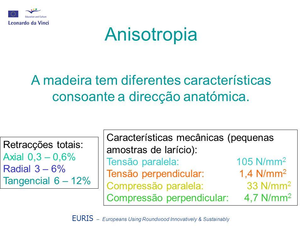 Anisotropia A madeira tem diferentes características consoante a direcção anatómica. Características mecânicas (pequenas amostras de larício):