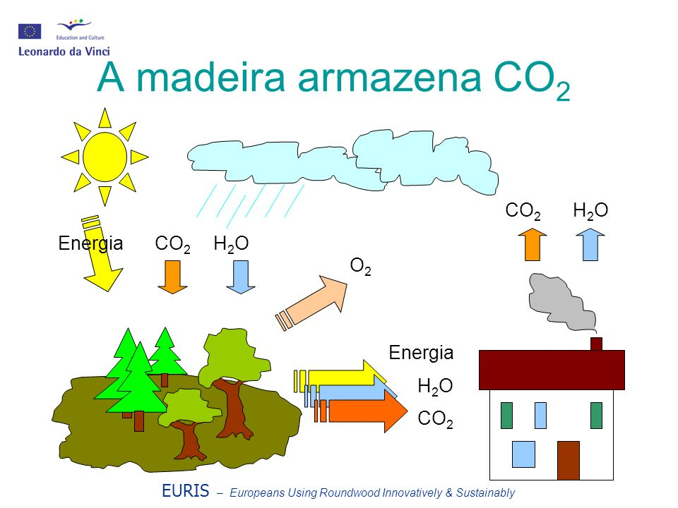 A madeira armazena CO2 CO2 H2O O2 Energia