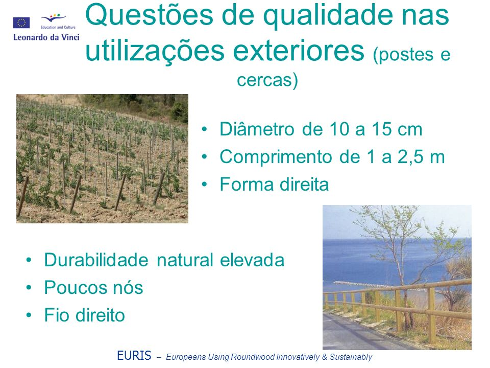 Questões de qualidade nas utilizações exteriores (postes e cercas)