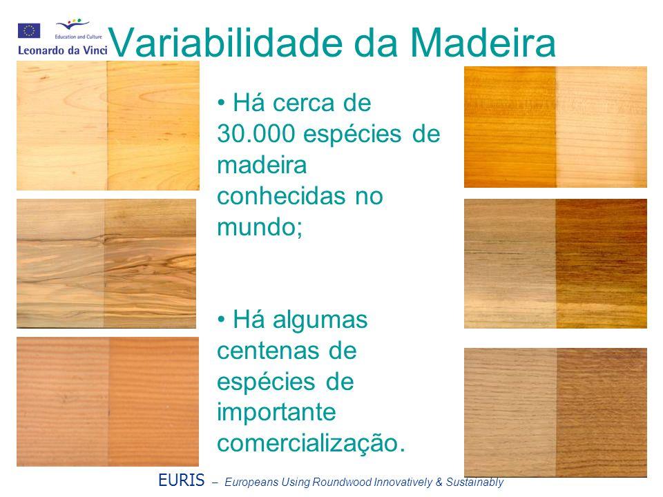 Variabilidade da Madeira