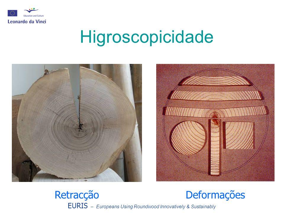 Higroscopicidade Retracção Deformações