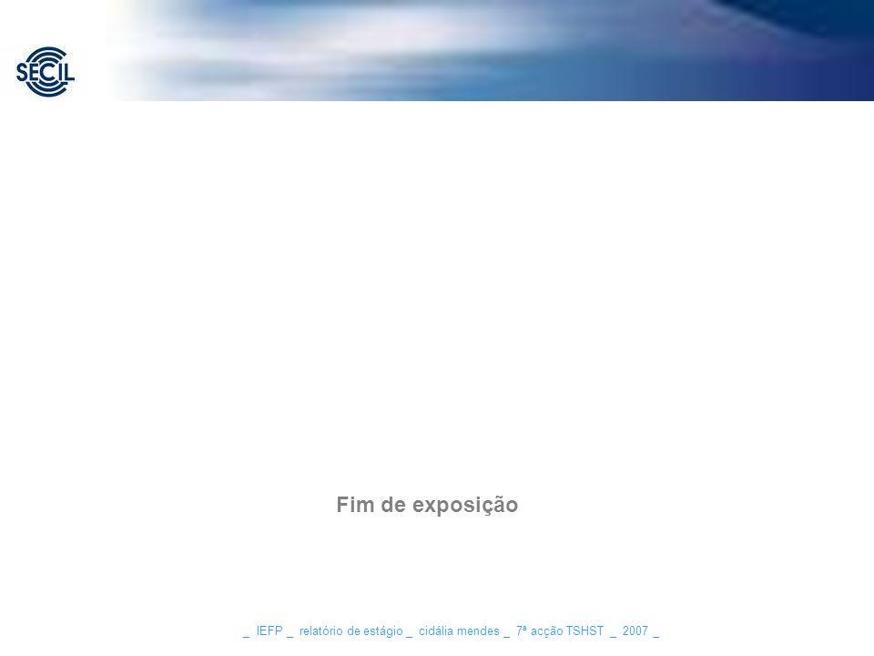 Fim de exposição _ IEFP _ relatório de estágio _ cidália mendes _ 7ª acção TSHST _ 2007 _
