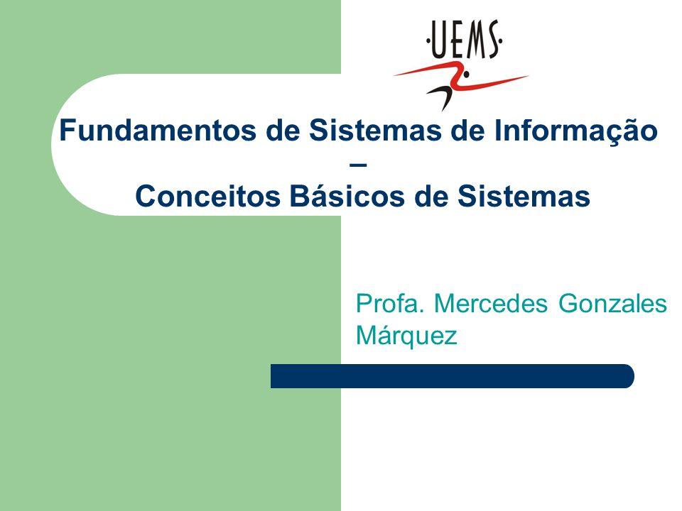 Fundamentos de Sistemas de Informação – Conceitos Básicos de Sistemas