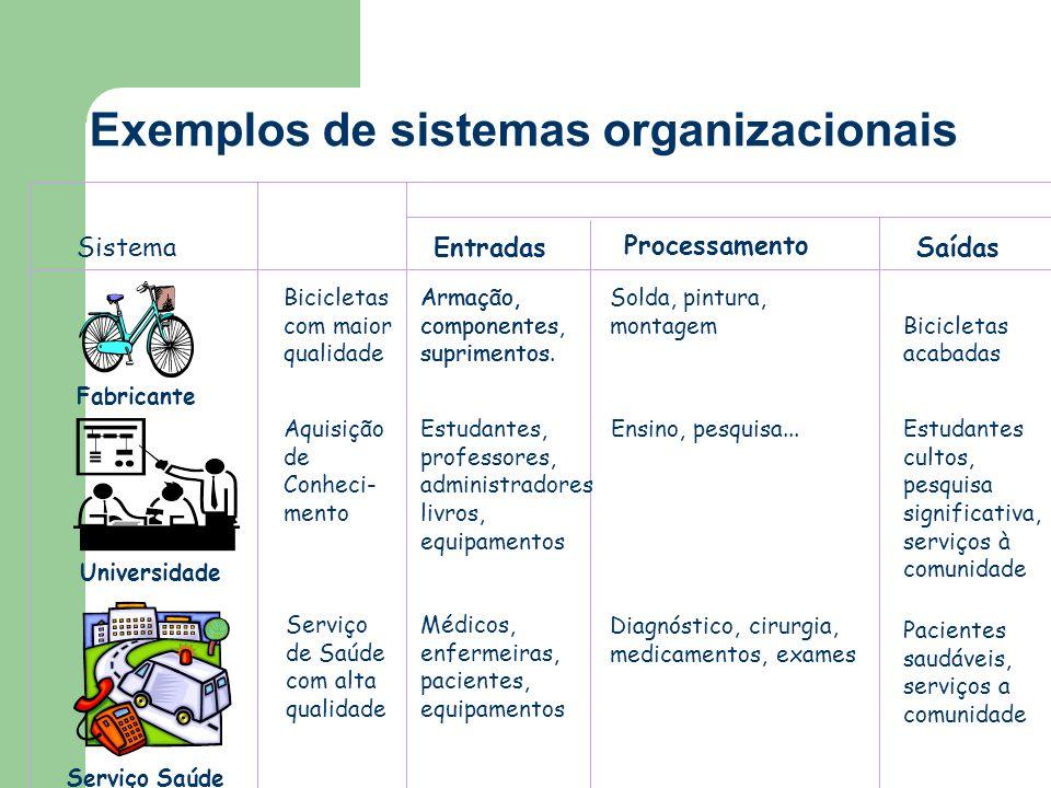 Exemplos de sistemas organizacionais