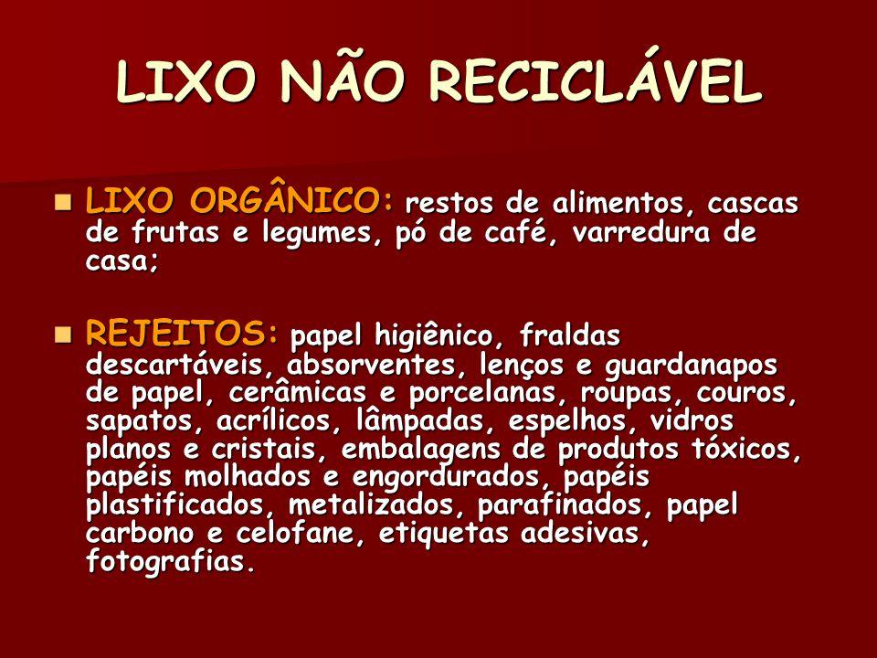 LIXO NÃO RECICLÁVEL LIXO ORGÂNICO: restos de alimentos, cascas de frutas e legumes, pó de café, varredura de casa;