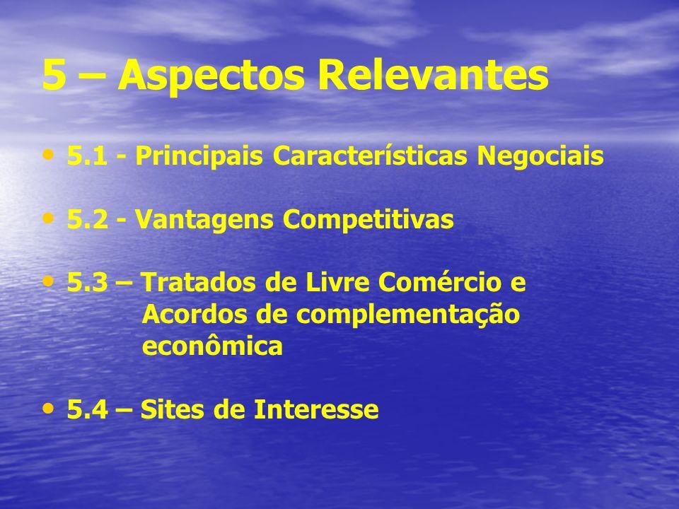 5 – Aspectos Relevantes 5.1 - Principais Características Negociais