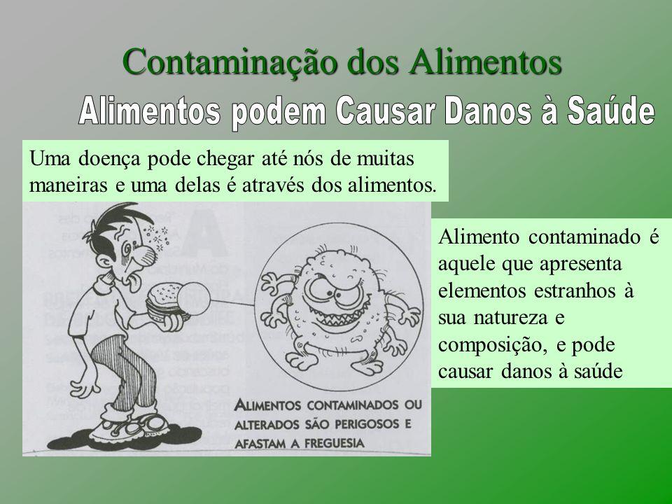 Contaminação dos Alimentos
