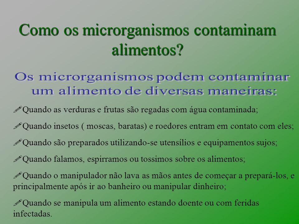 Como os microrganismos contaminam alimentos